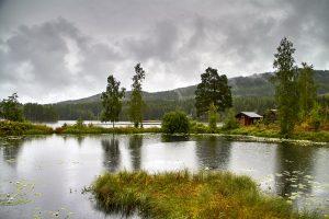 Skandinavientour - Landschaft im Värmland/Schweden Nähe Torsby